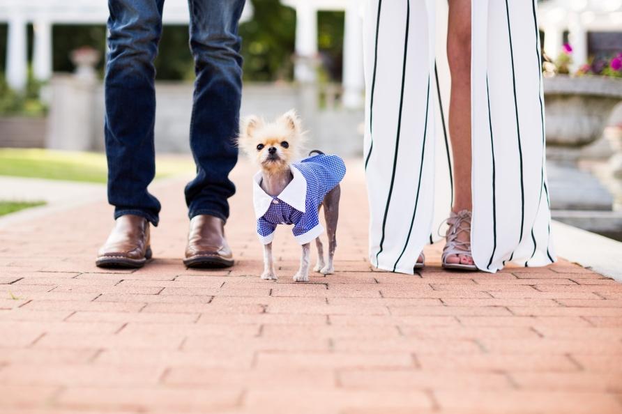Fort Wayne Lakeside Rosegarden Summer Engagement Session with dog